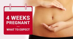 Four Week Pregnancy