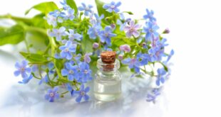 cosmetic-oil-essential-oil-Aromatherapy