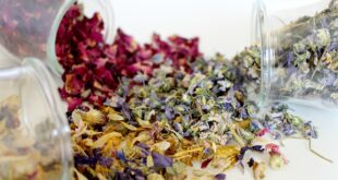 flower-spices-dry-herbs